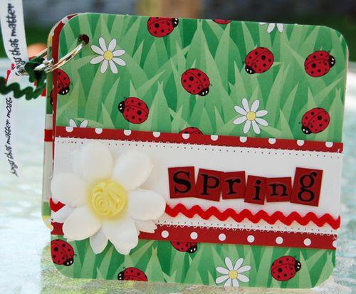 Spring mini book 1 may09